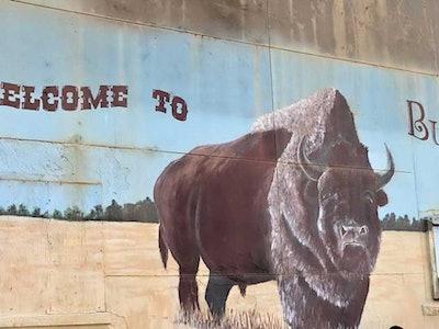 Buffalo-Main-Image