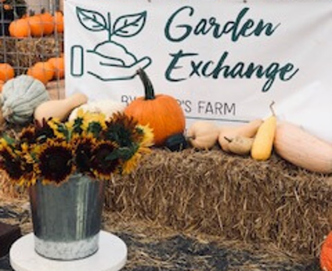 Business Highlight – The Garden Exchange by Rader's Farm